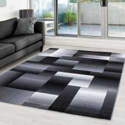 Rug modern appointed Miami...