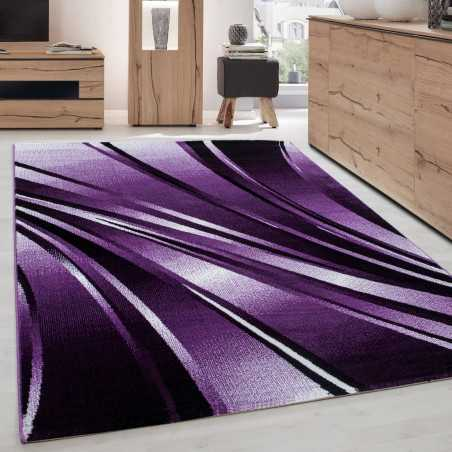 Carpet modern appointed Parma 9210 PURPLE